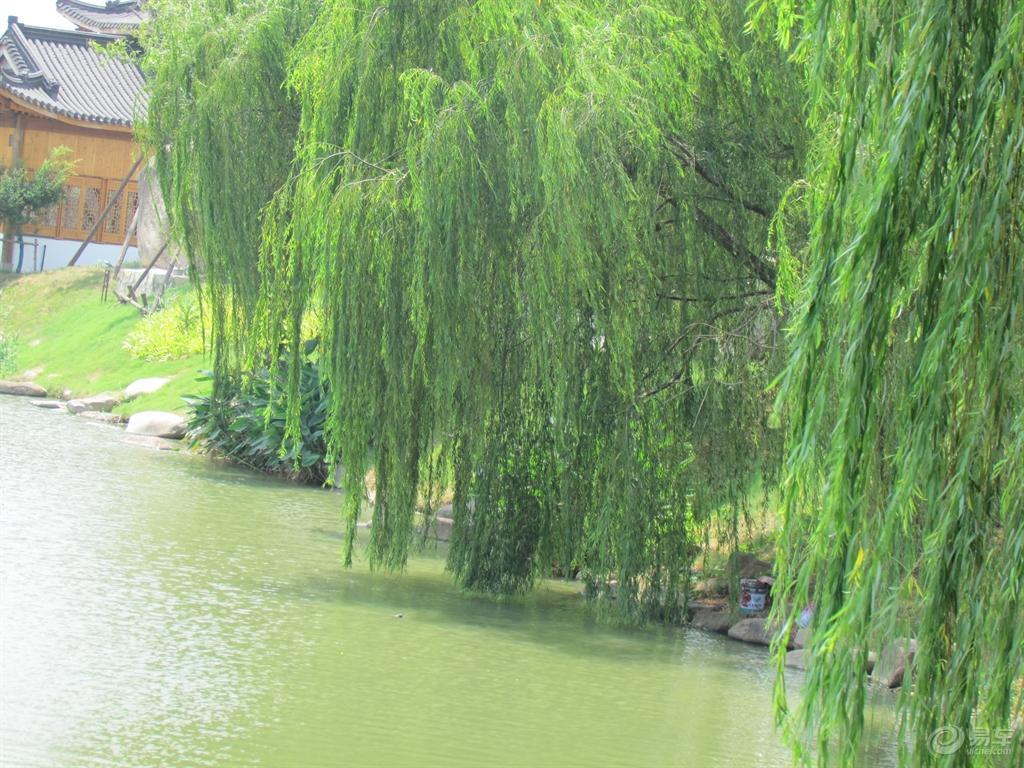 云南旅游景点图片