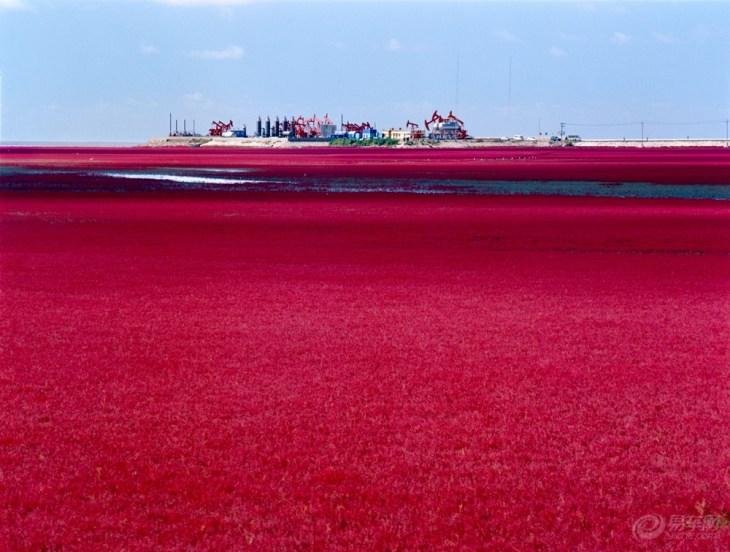 【红海滩周边自驾游_红海滩自驾游路线攻略_红海滩】