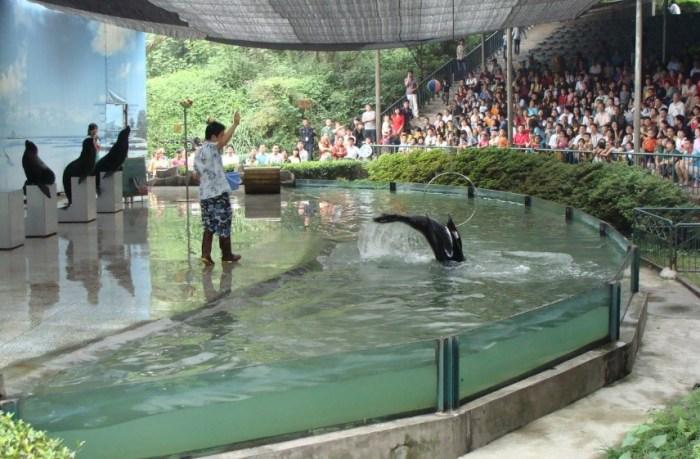 【永川野生动物园风景图片