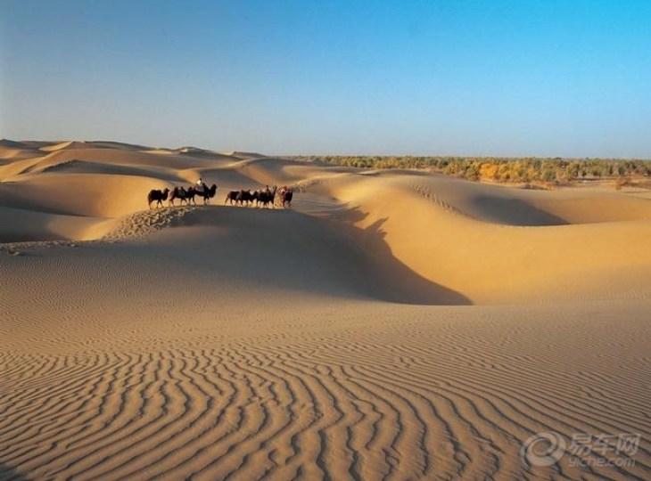 这里,金字塔形的沙丘屹立于平原以上300米.