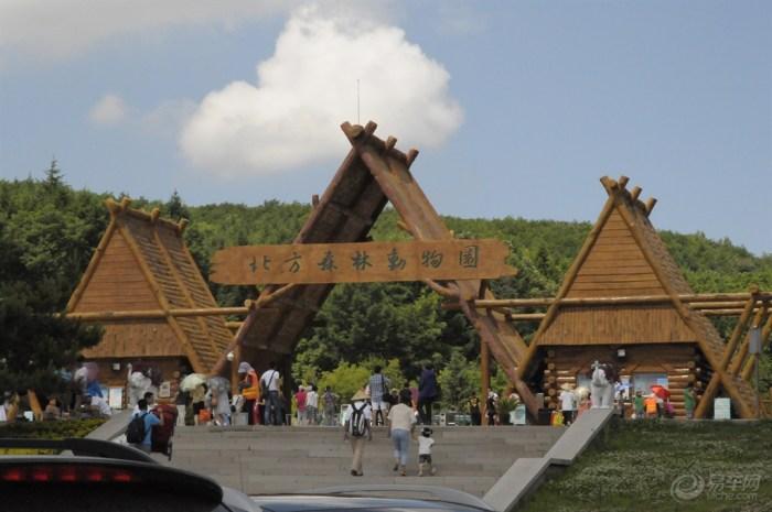 园内现代典雅的动物展馆、赏心悦目的园林景观、设施齐备的服务场所,处处彰显自然景观与人文园林的巧妙衔接。园中共建有猛禽、鸟语林、猴山、灵长类馆、中型猛兽馆、极地动物馆等二十几个现代化动物馆舍,及狮虎、鹿、熊、狼、非洲动物五个大型散放区。散放区独特的隔离方式,拉近人与动物的距离。这里共展出动物300种5万余头只,有世界极珍稀动物白虎、白狮、北极熊、非洲猎豹,国家一级保护动物东北虎、亚洲象、白唇鹿、丹顶鹤等;还有从非洲引进的20种近300头只羚角类动物,形成了壮观的非洲动物散放区。全国一流的动物明星,每天在大型