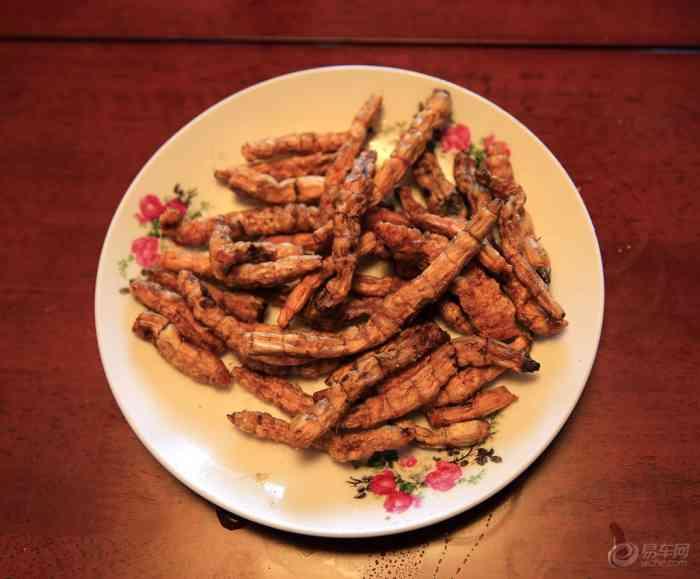 【【之旅镇江】大年初二年味饭】论坛亲情美食中国v之旅美食图片