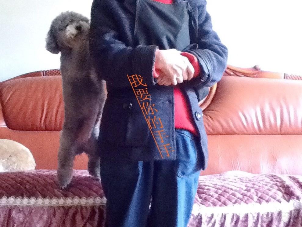 【【宠物帝】小小淘气包】_论坛符号表情包信微喜v宠物图片表情图片