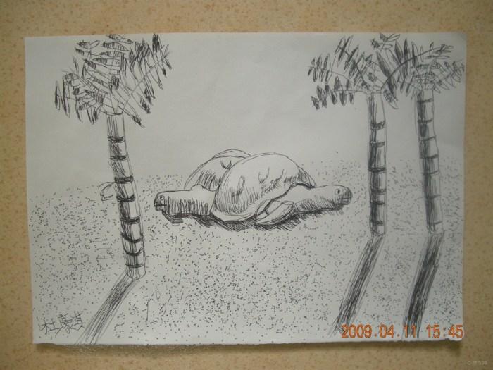 蚕宝宝博物馆简笔画内容图片展示