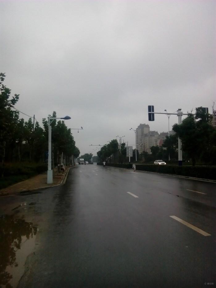 风景/行道景观树边人行道上秋雨中感受风景4/338