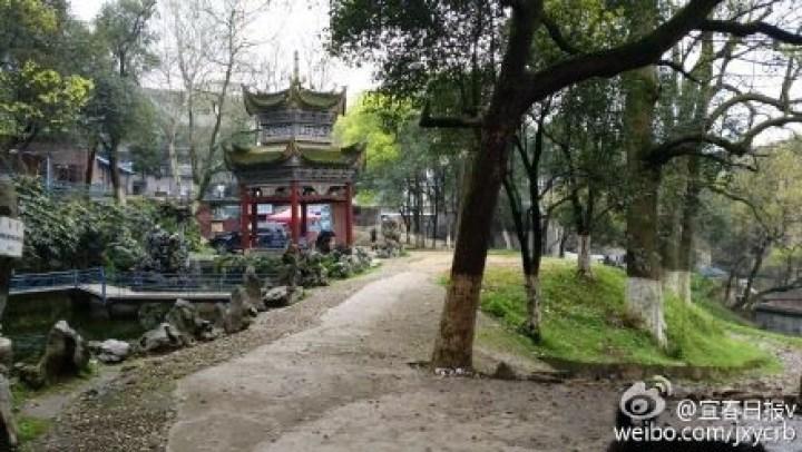宜春市动物园一饲养员被老虎咬死