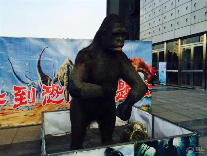 首先来个猩猩吧 叫金刚吧!
