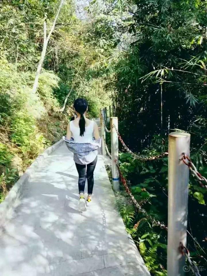 走进森林感受公园带来的美景