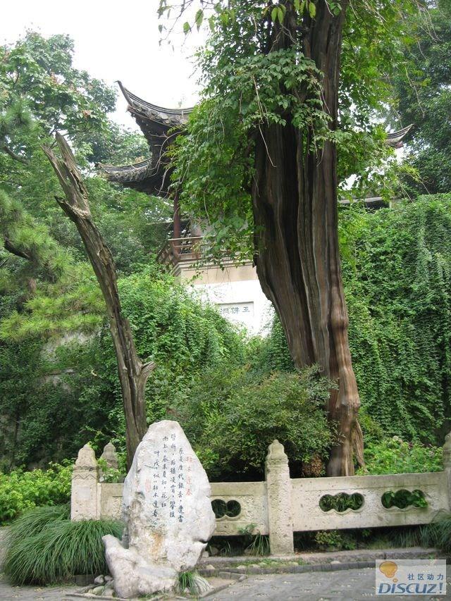 扬州著名旅游景点—瘦西湖图片报道(一)