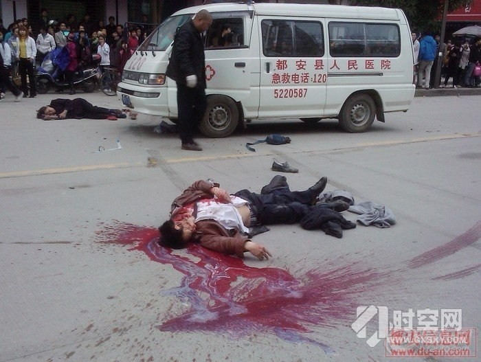 广西陆川县卫生局_陆川至博白路段上的瘟疫病死猪该谁处理_关