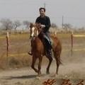 牧马人2001