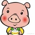 可爱尛猪猪